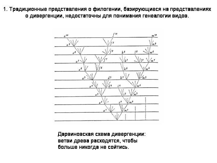Горизонтальный перенос генов и
